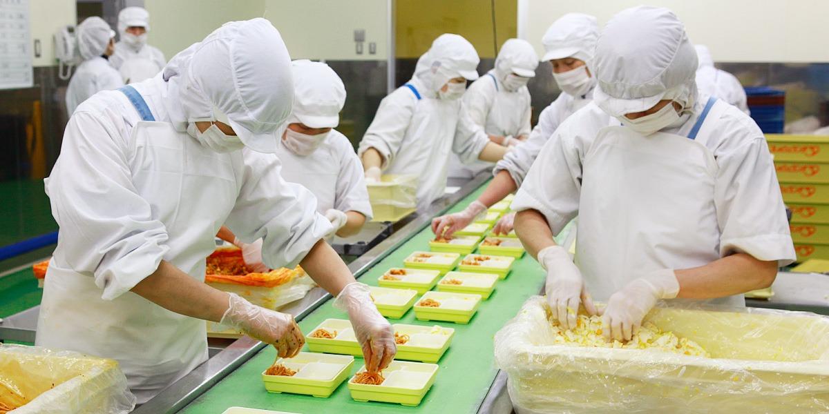 Công nghệ kỹ thuật chế biến và bảo quản lương thực